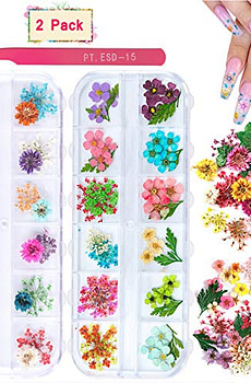 2-Boxes-Dried-Flowers-for-Nail-Art-KISSBUTY-24-Colors
